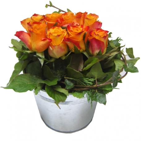 jardin de rose pour mariage